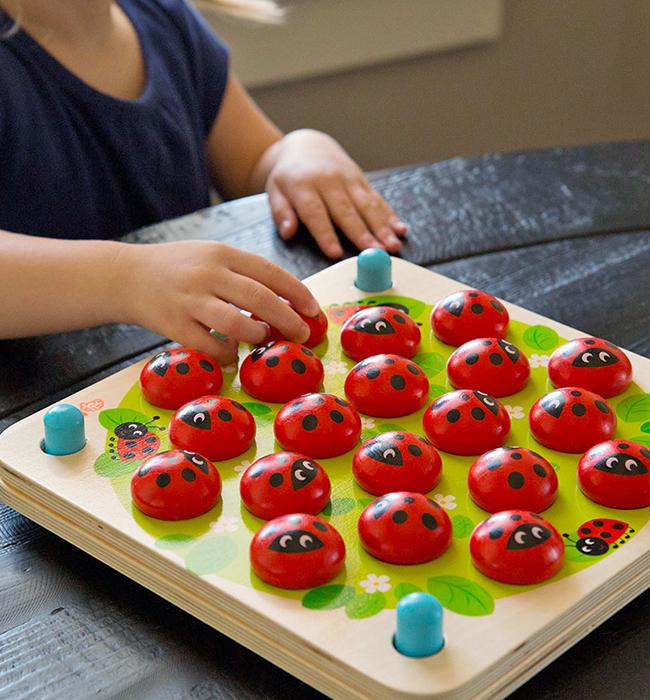 https://www.fatbraintoys.com/toy_companies/fat_brain_toys/ladybugs_garden_memory_game.cfm