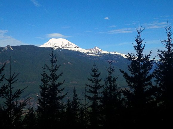 Mt. Rainier from Packwood Trail