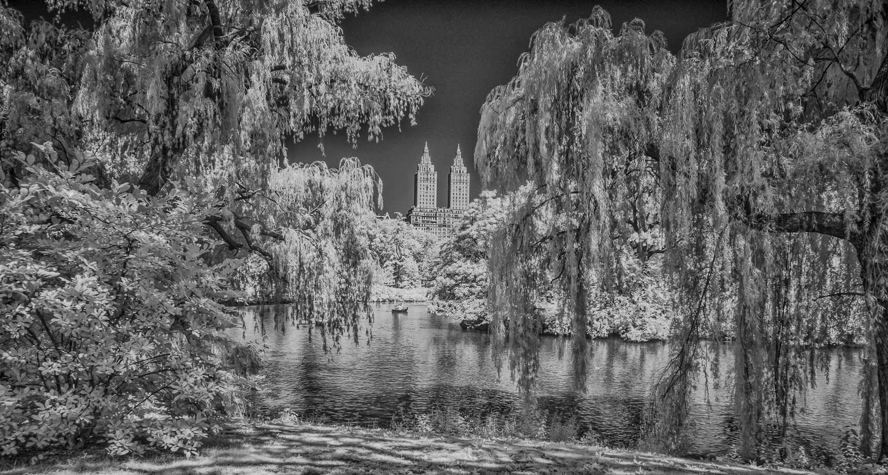 New York City infrared - Central Park B&W