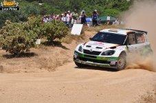 217 Rally Itlaia Sardegna 2013 WRC Luca Pirina