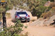 70 Rally Itlaia Sardegna 2013 WRC Luca Pirina