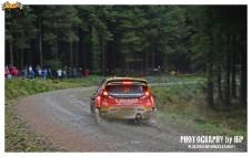 002-rally-gran-bretagna-wrc-2013
