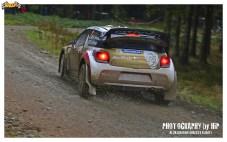 003-rally-gran-bretagna-wrc-2013