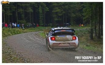 006-rally-gran-bretagna-wrc-2013