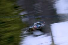 SVEZIA 2014 PURE WRC-14