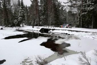 SVEZIA 2014 PURE WRC-29