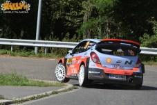 Adac Rally Germania 2015 289
