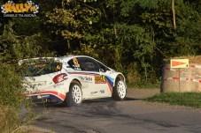 Adac Rally Germania 2015 395