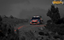 Rally di Sardegna 2012 139