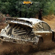 018-test-rally-polo-r-wrc-2017-rally_it-watermarked