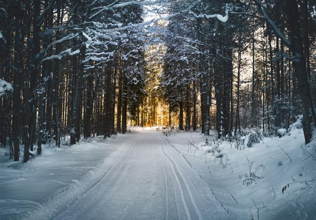 Why you need a Polaris Repair Manual for your Snowmobile