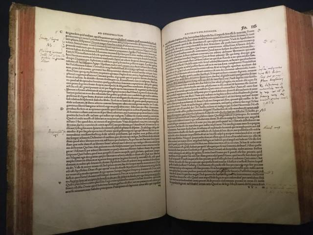 Luther study Bible