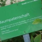 Baumpatenschaften am St. Alban Rheinweg