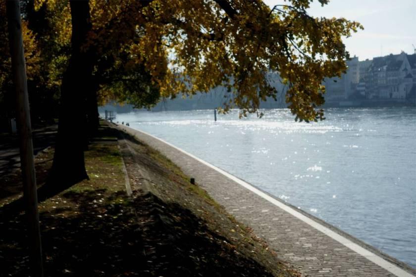 Rheinspaziergang3