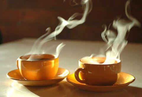 Tee-Potel
