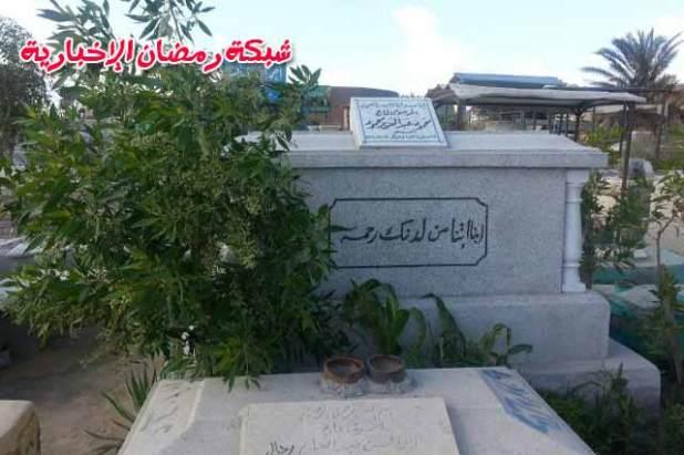 Mahmoud-Abdalziz6