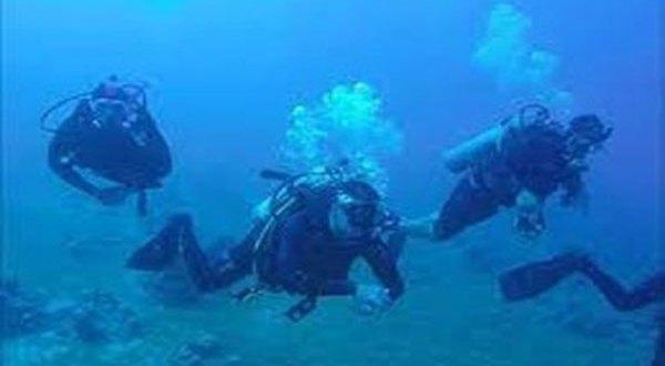 شاهد بالفيديو .. ظهور كائن غريب في البحر الأحمر