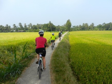Riding on dikes between fields.