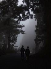 Okunoin graveyard Koyosan in the mist.