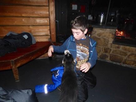 Dec with Husky puppy.