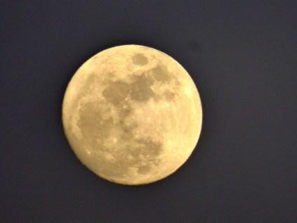 Kelaw Moon.