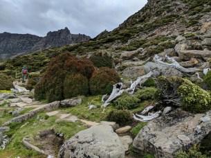 Climbing towards Mount Ossa.