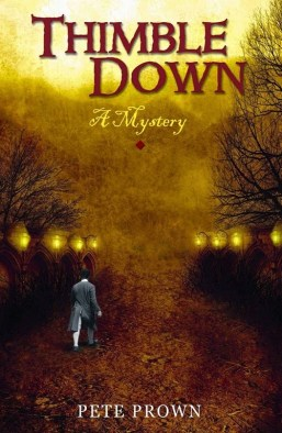 Thimble Down book cover