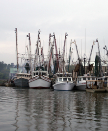 Fishing boats in McClellanville.