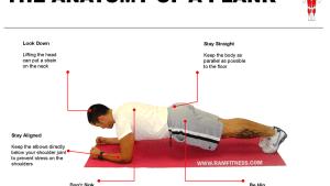 Anatomy Of A Plank Ramfitness