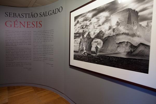 Entrada de la exposición en La Caixa de Santa Cruz de Tenerife