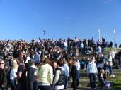 bevrijdingsfestival 2010 287