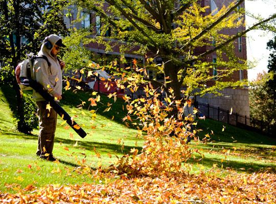ramos landscaping - professional
