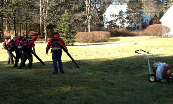spring clean - ramos landscaping