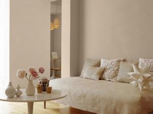 Living Room Emulsion Colours