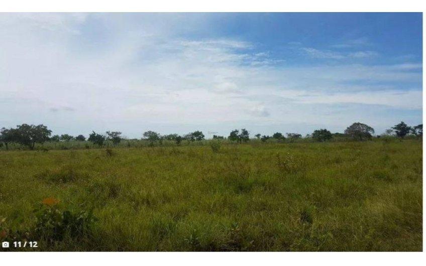 Take advantage 6.6has flat farm Anton 2 minutes from CPanamericana