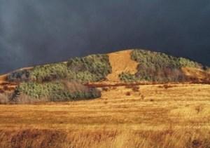 Zalesněný kopec Raná