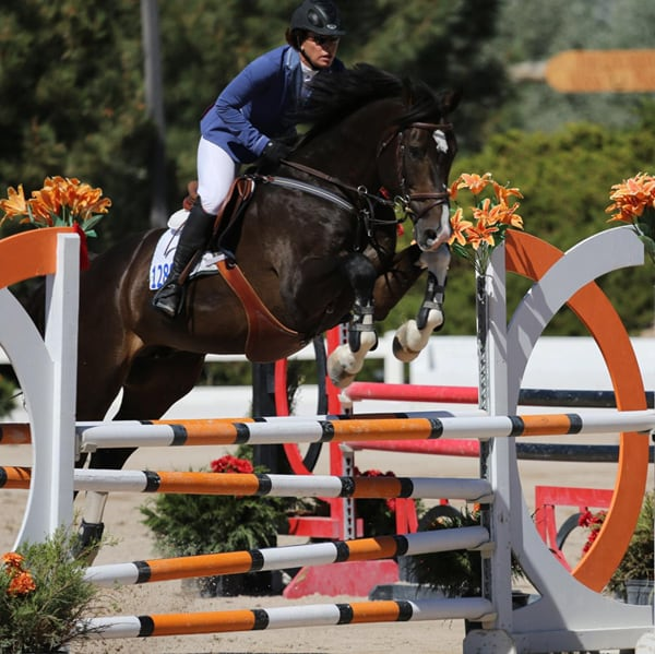 Artist Amp Equestrian Sharon Mcelvain Rancho Corazon