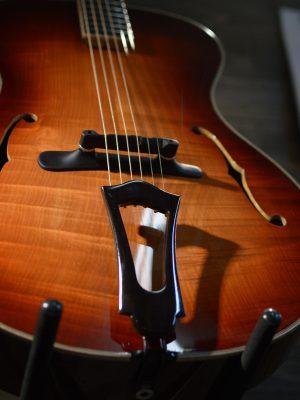 Cedar Top Archtop Guitar