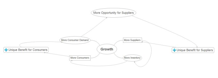 network effects growth model