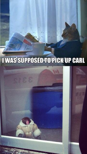 Pick up Carl