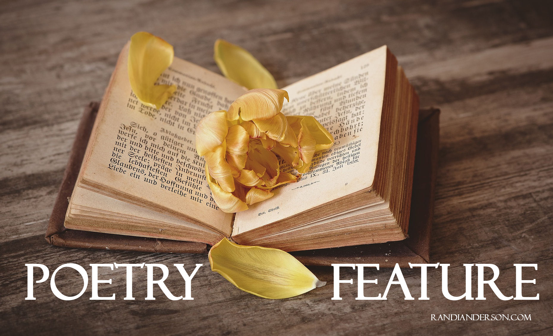 Poetry Feature Image - RandiAnderson.com