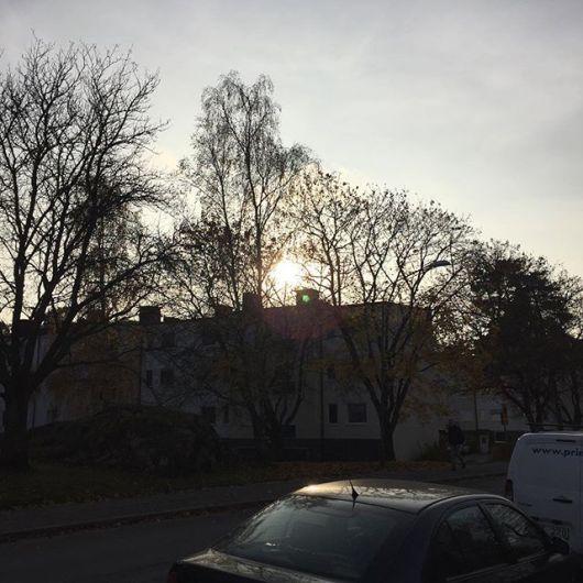 Den bleka solens tidevarv