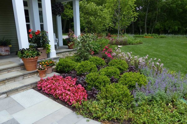 wintergreen boxwood simple landscaping