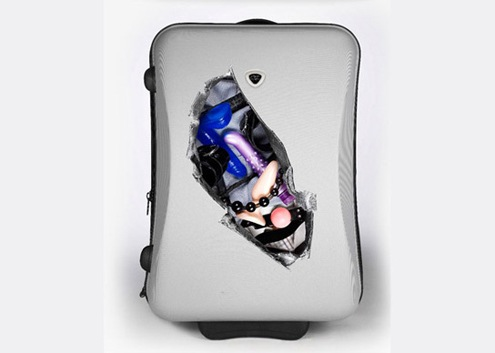 dildo suitcase