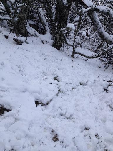la piste a disparu sous la neige