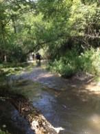 Un groupe remonte la rivière