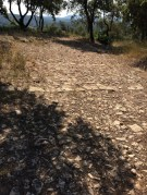 Chemin caladé en direction de la chapelle Saint-Joseph