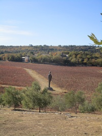 Balade improvisée dans les vignes de la commanderie de Peyrassol