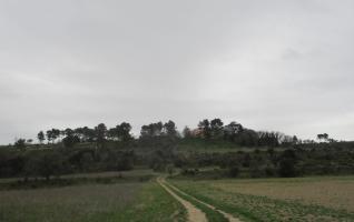 Les collines d'Eguilles par Saint-Martin