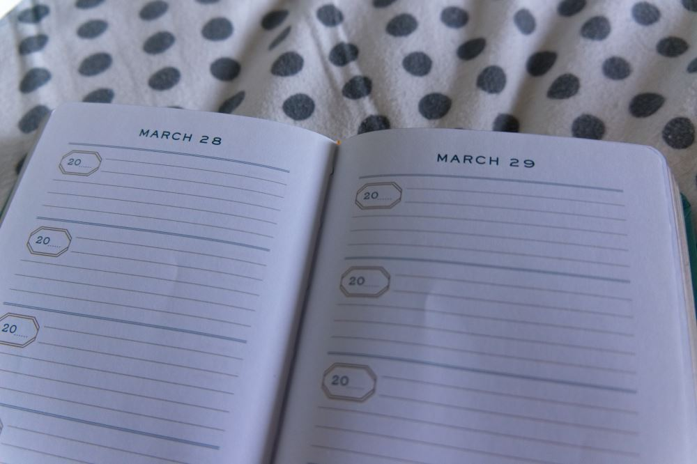 One LIne a Day - March pages blank